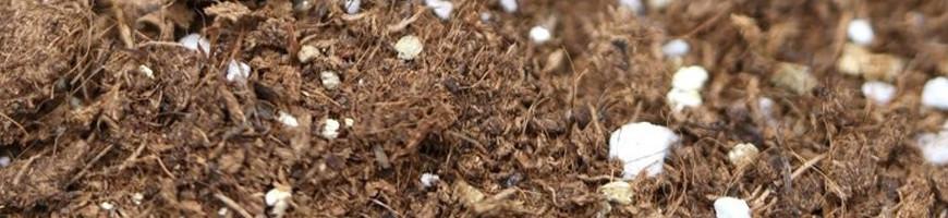 Matériel et Substrat pour plantes exotiques - carnivores - terrarium
